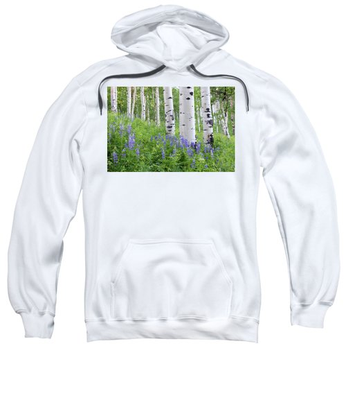 Aspen And Lupine Sweatshirt