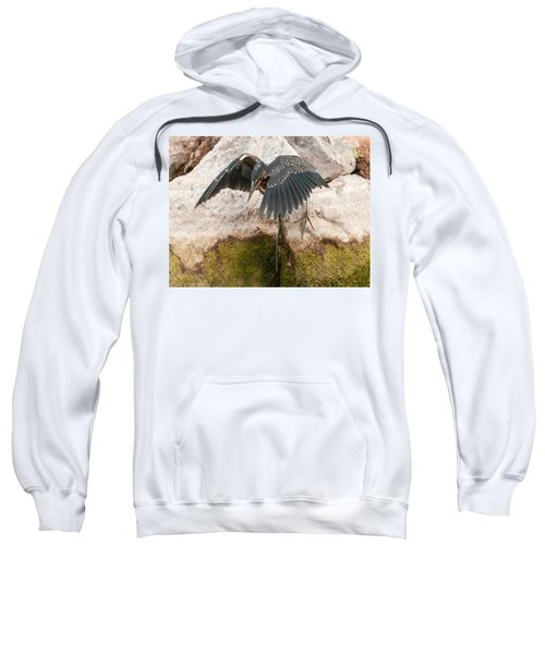 Attack Mode Sweatshirt