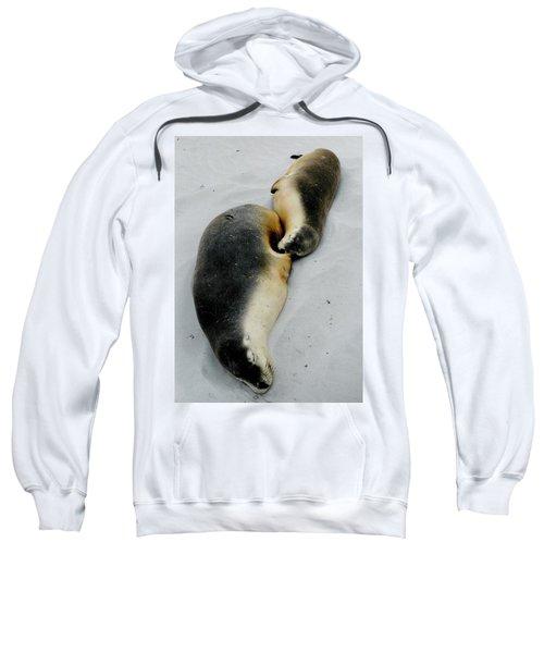 Australian Sea Lions Sweatshirt