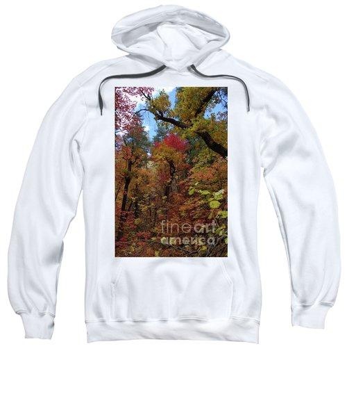 Autumn In Sedona Sweatshirt