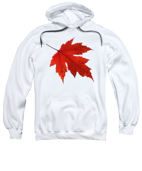 Autumn Leaf 2 Sweatshirt