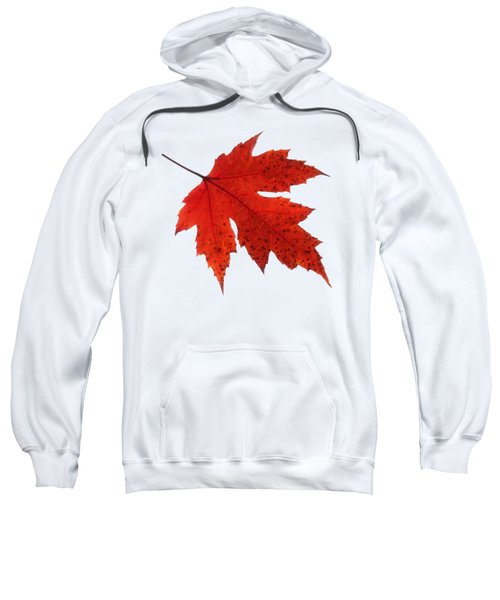 Autumn Leaf 2 Sweatshirt