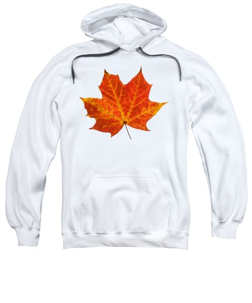 Autumn Leaf 3 Sweatshirt