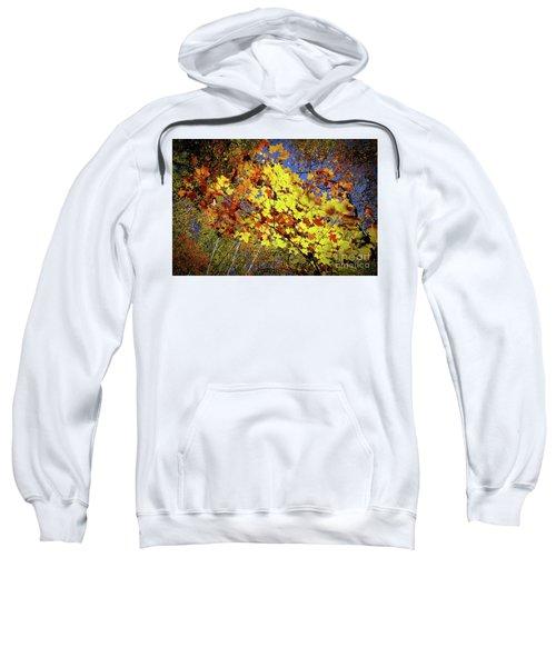 Autumn Light Sweatshirt by Tatsuya Atarashi