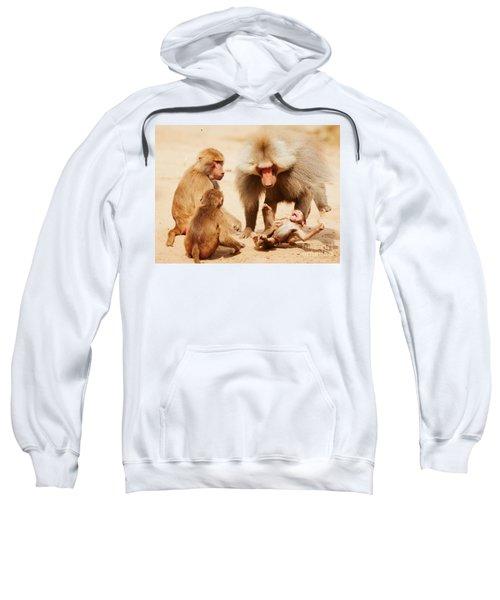 Baboon Family Having Fun In The Desert Sweatshirt