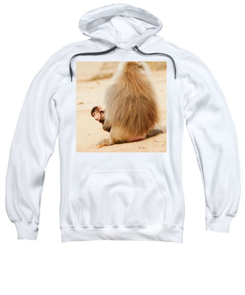 Baboon With A Baby  Sweatshirt