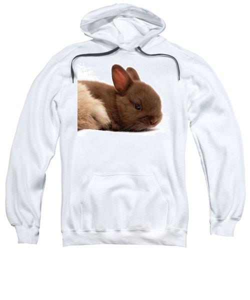 Baby Bunny  #03074 Sweatshirt