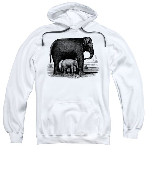 Baby Elephant T-shirt Sweatshirt by Edward Fielding
