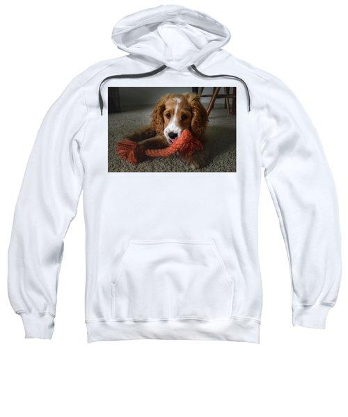 Baby Gizmo Sweatshirt
