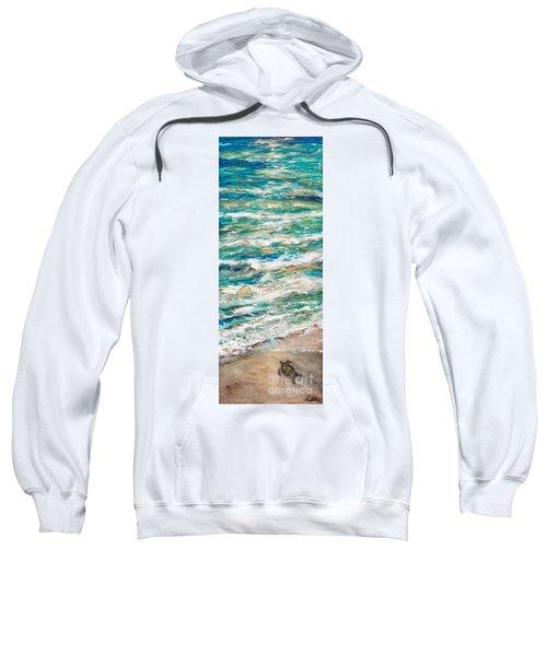 Baby Sea Turtle II Sweatshirt