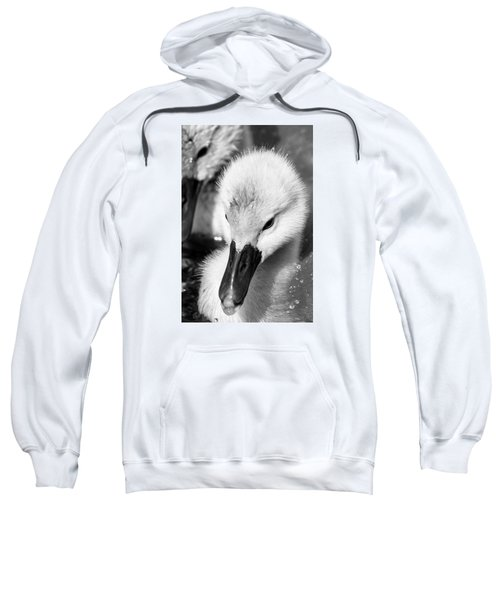 Baby Swan Headshot Sweatshirt