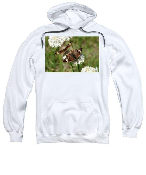 Back To Back Butterflies Sweatshirt