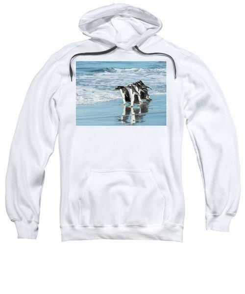 Back To The Sea. Sweatshirt