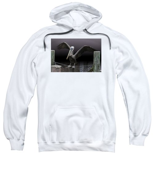 Balancing Act - Pelican Sweatshirt