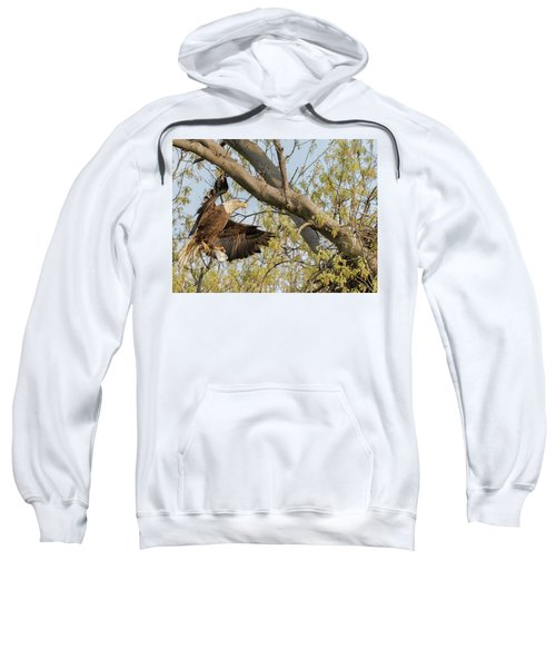 Bald Eagle Catch Of The Day  Sweatshirt