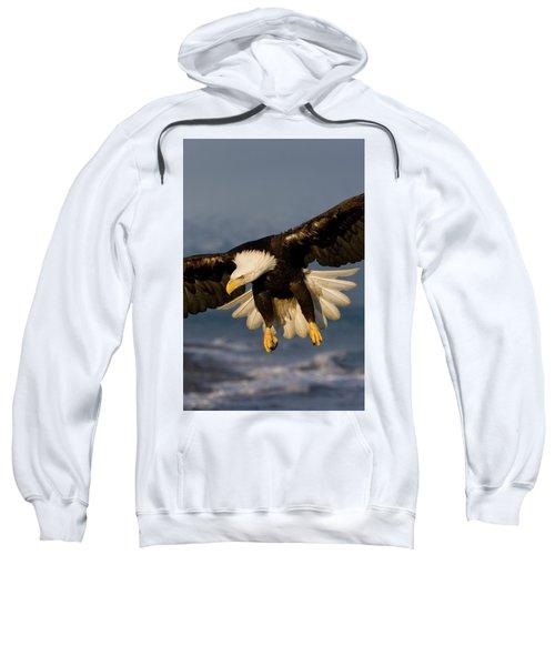 Bald Eagle In Action Sweatshirt