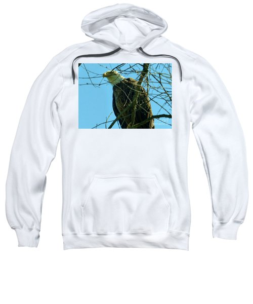 Bald Eagle Keeping Guard Sweatshirt