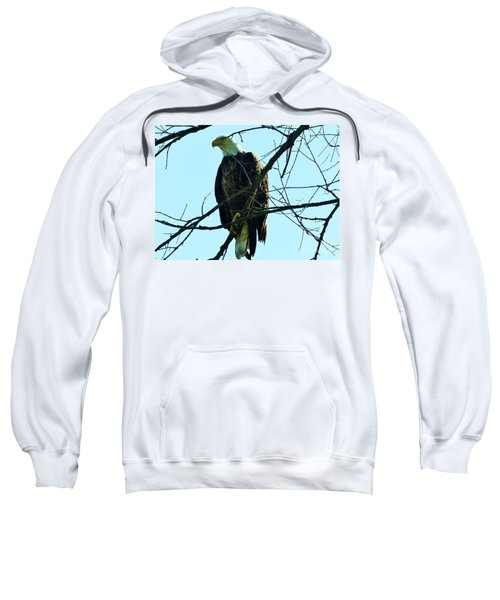 Bald Eagle Over The Root River Sweatshirt