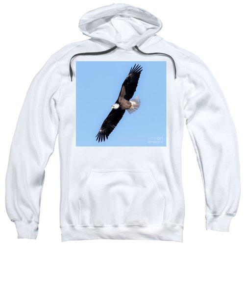 Bald Eagle Overhead  Sweatshirt by Ricky L Jones
