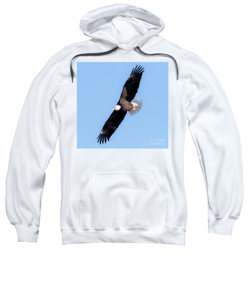 Bald Eagle Overhead  Sweatshirt