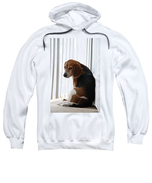 Beagle Attitude Sweatshirt
