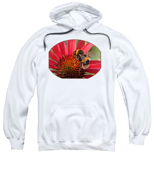 Bee On Red Coneflower 2 Sweatshirt