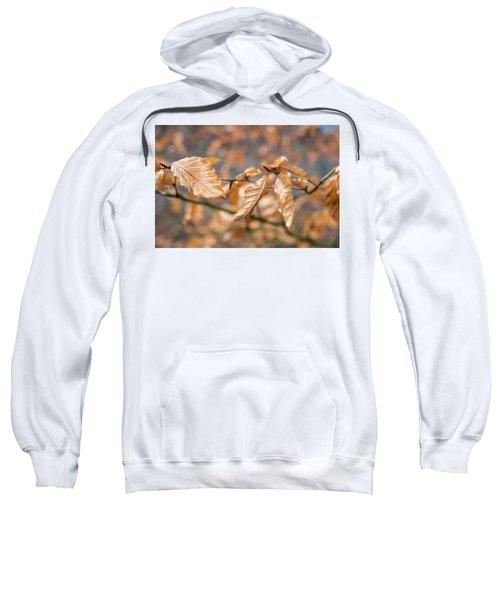 Beech Garland 2 Sweatshirt