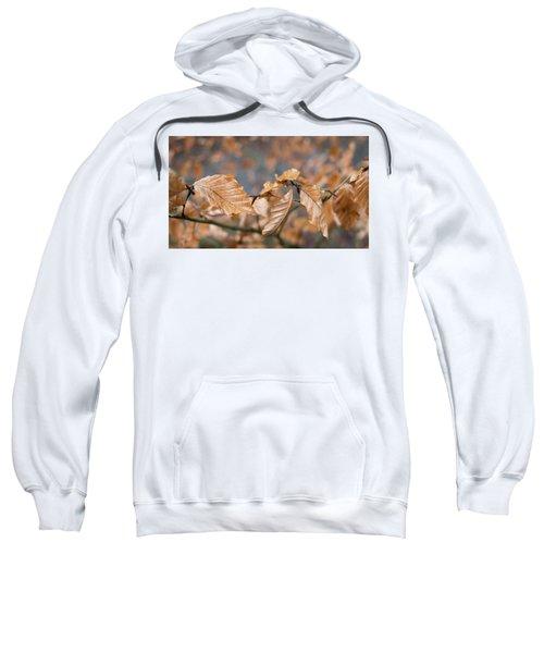 Beech Garland 3 Sweatshirt
