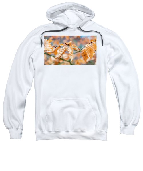 Beech Garland Sweatshirt