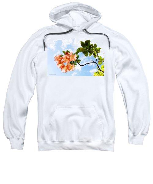 Bell Flowers In The Sky Sweatshirt