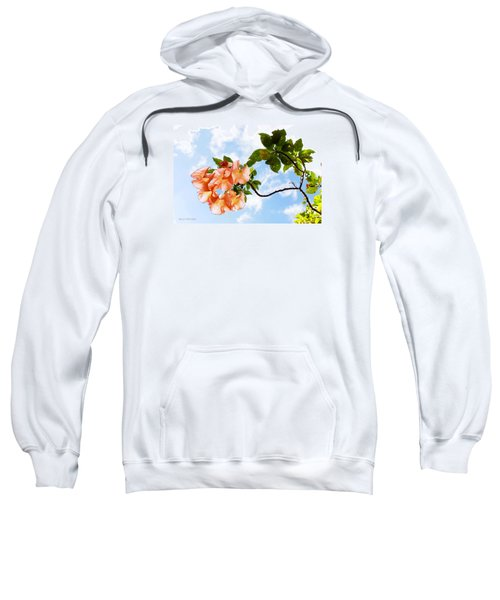 Bell Flowers In The Sky Sweatshirt