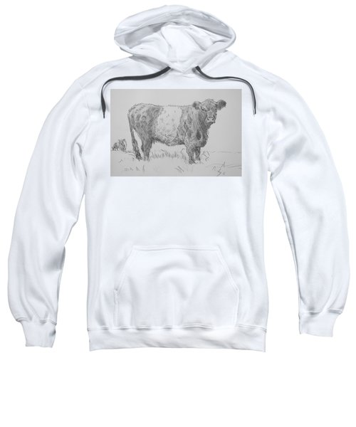 Belted Galloway Cow Pencil Drawing Sweatshirt