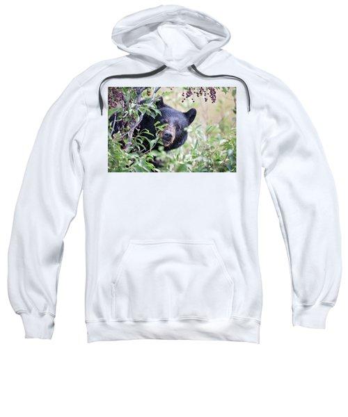 Berry Picking  Sweatshirt