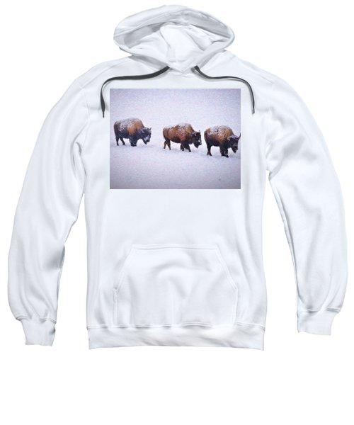 Bison March Impressions Sweatshirt