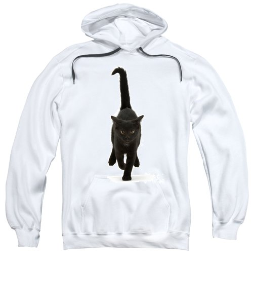 Black Cat On The Run Sweatshirt