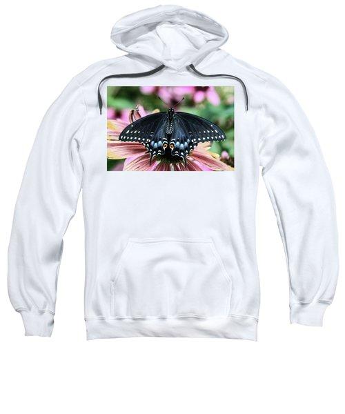 Black Swallowtail 3 Sweatshirt