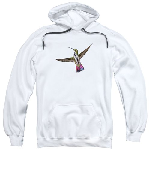 Black Throated Mango Sweatshirt