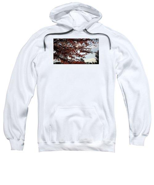 Blister  Sweatshirt by Jana E Provenzano