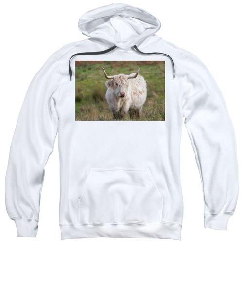 Blondie Sweatshirt