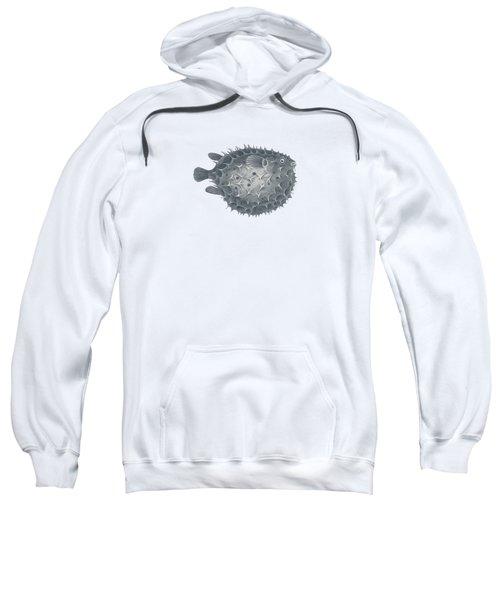 Blowfish - Nautical Design Sweatshirt