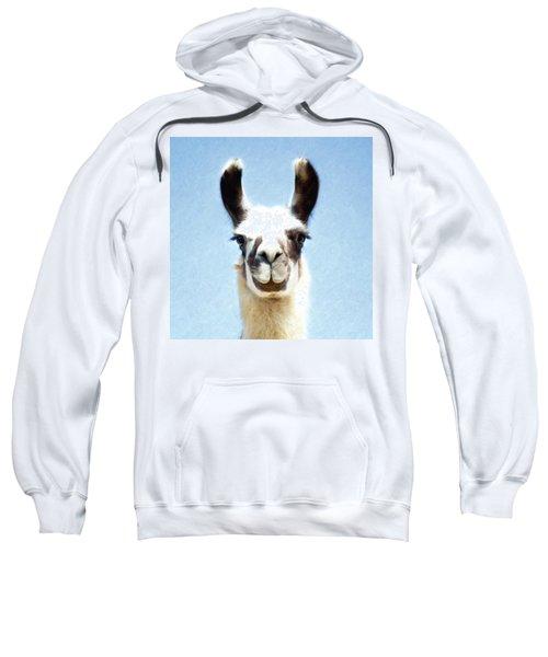 Blue Llama Sweatshirt