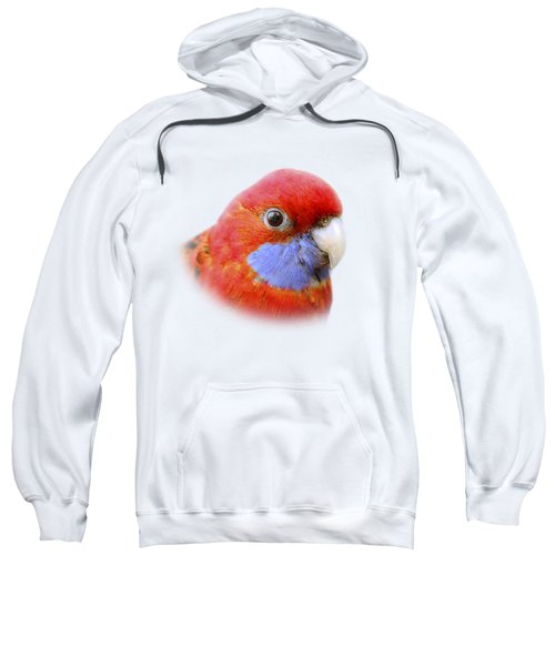 Bobby The Crimson Rosella On Transparent Background Sweatshirt by Terri Waters