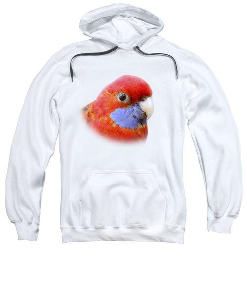 Bobby The Crimson Rosella On Transparent Background Sweatshirt