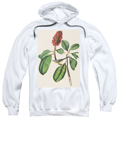 Bonaparte's Flycatcher Sweatshirt by John James Audubon