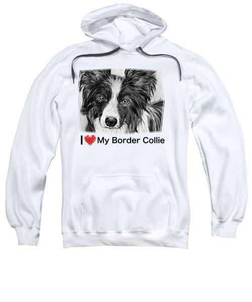 Border Collie Stare Sweatshirt