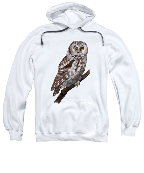Boreal Owl Tengmalm's Owl Aegolius Funereus - Nyctale De Tengmalm - Paerluggla - Nationalpark Eifel Sweatshirt