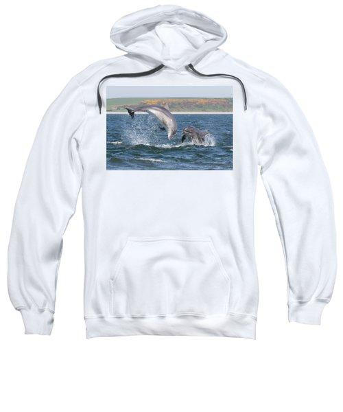 Bottlenose Dolphin - Moray Firth Scotland #49 Sweatshirt