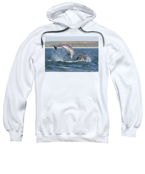 Bottlenose Dolphin - Moray Firth Scotland #49 Sweatshirt