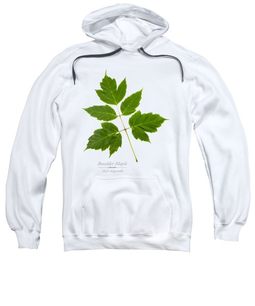 Sweatshirt featuring the mixed media Box Elder Maple by Christina Rollo