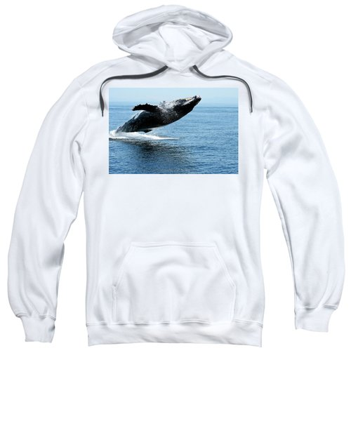 Breaching Humpback Whales Happy-2 Sweatshirt